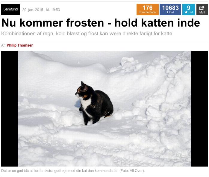 Agria artikel i Ekstra Bladet med titlen Nu kommer frosten - hold katten inde.